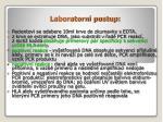 laboratorn postup1