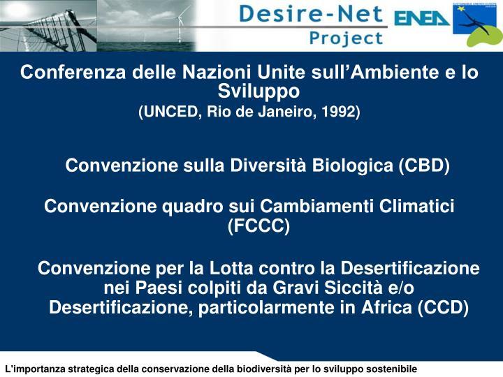 Conferenza delle Nazioni Unite sull'Ambiente e lo Sviluppo