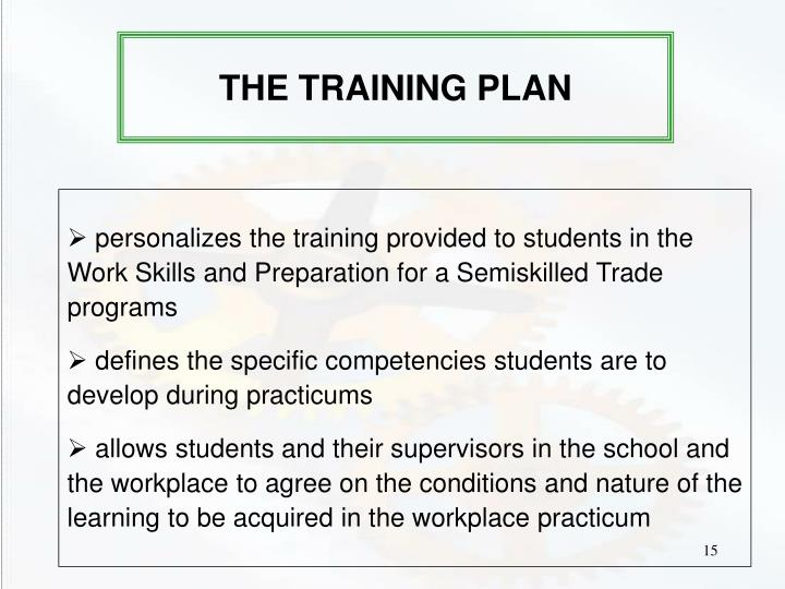 THE TRAINING PLAN