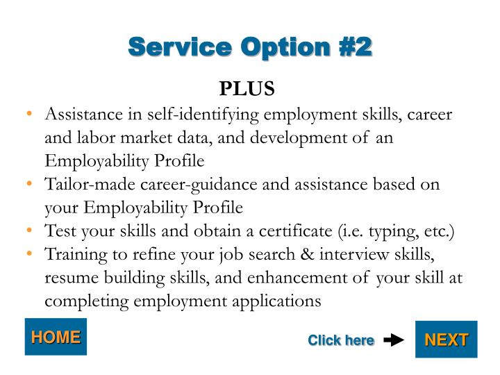 Service Option #2