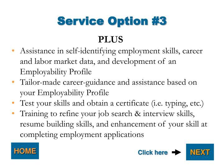 Service Option #3
