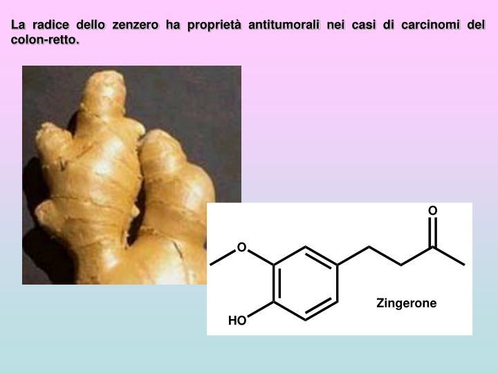 La radice dello zenzero ha proprietà antitumorali nei casi di carcinomi del colon-retto.
