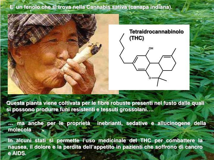 E' un fenolo che si trova nella Cannabis sativa (canapa indiana).