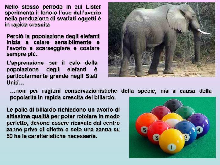 Perciò la popolazione degli elefanti inizia a calare sensibilmente e l'avorio a scarseggiare e costare sempre più.