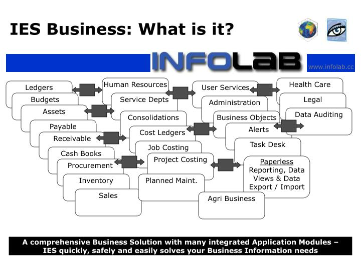 IES Business: What is it?