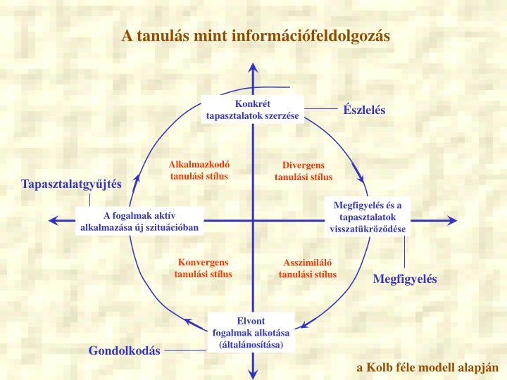 A tanulás mint információfeldolgozás