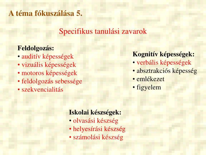 A téma fókuszálása 5.