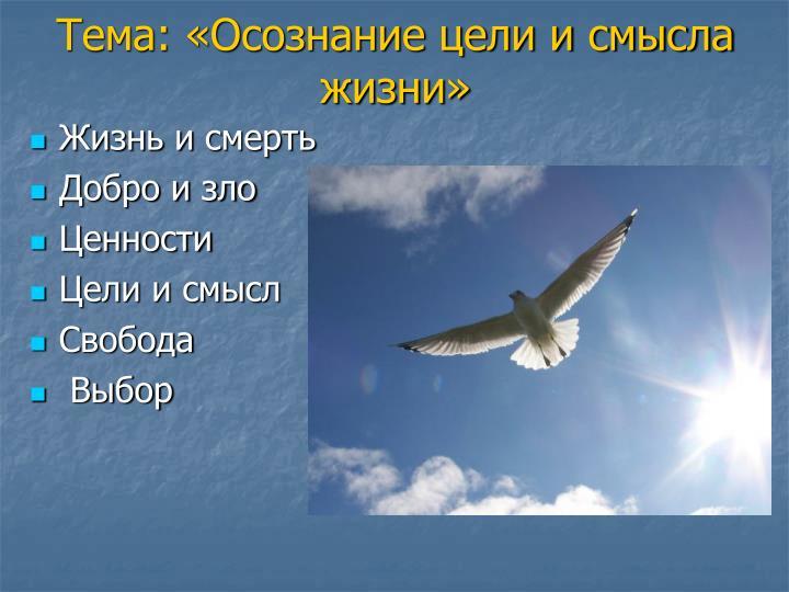 Тема: «Осознание цели и смысла жизни»