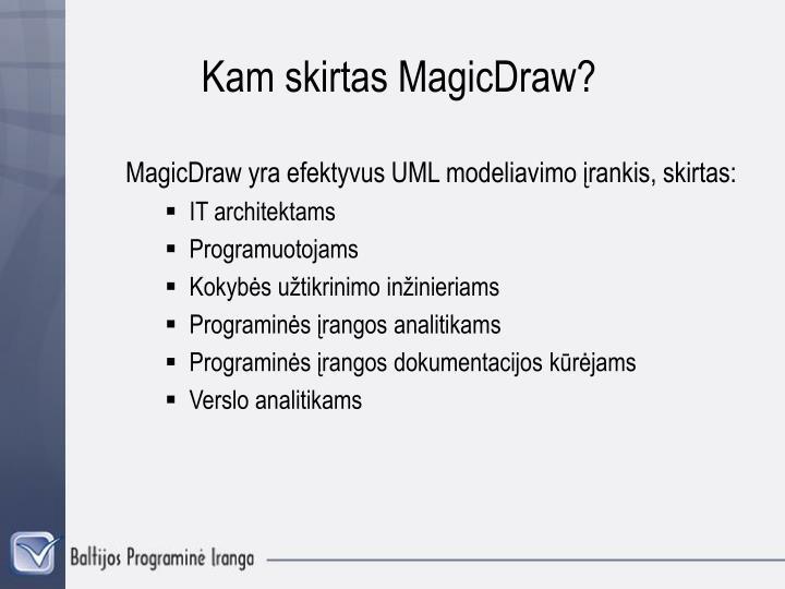 Kam skirtas MagicDraw?