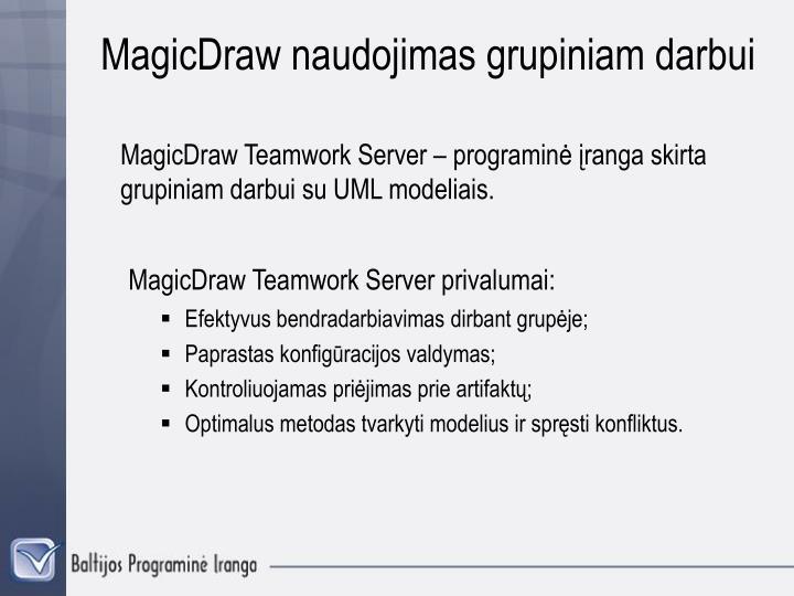 MagicDraw naudojimas grupiniam darbui