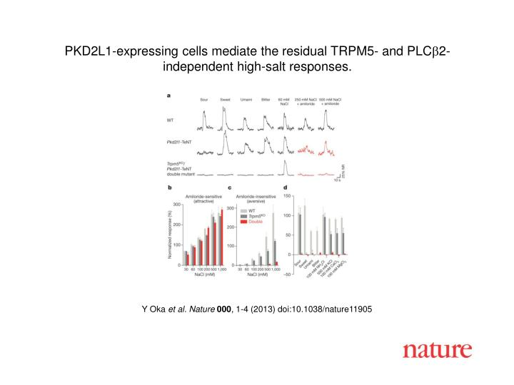 PKD2L1-expressing cells mediate the residual TRPM5- and PLC