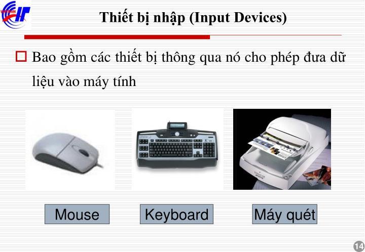Thiết bị nhập (Input Devices)
