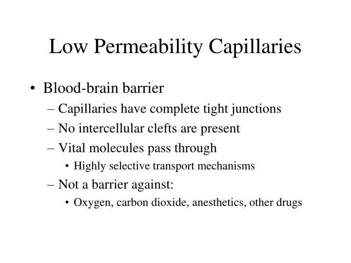 Low Permeability Capillaries