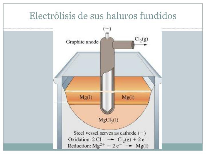 Electrólisis de sus haluros fundidos