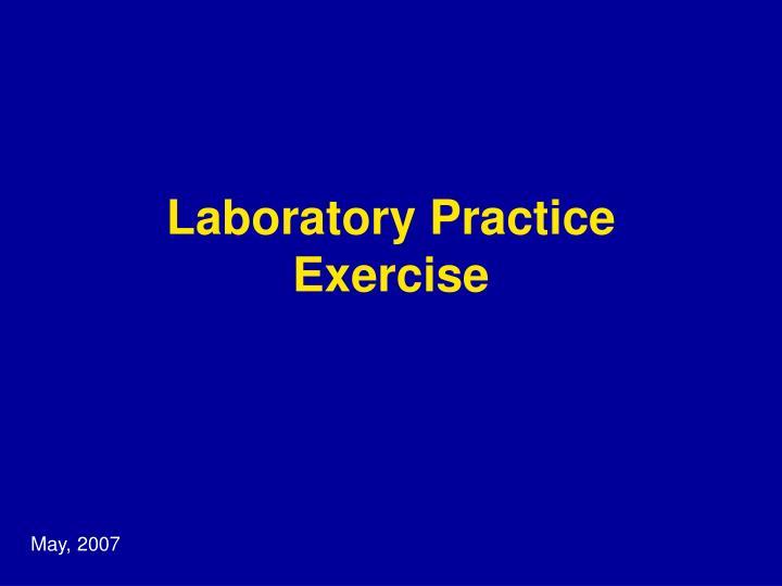 Laboratory Practice Exercise