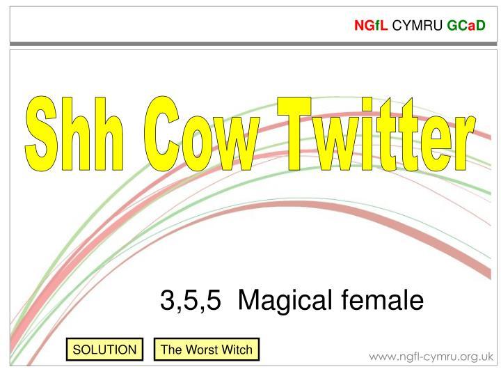 Shh Cow Twitter