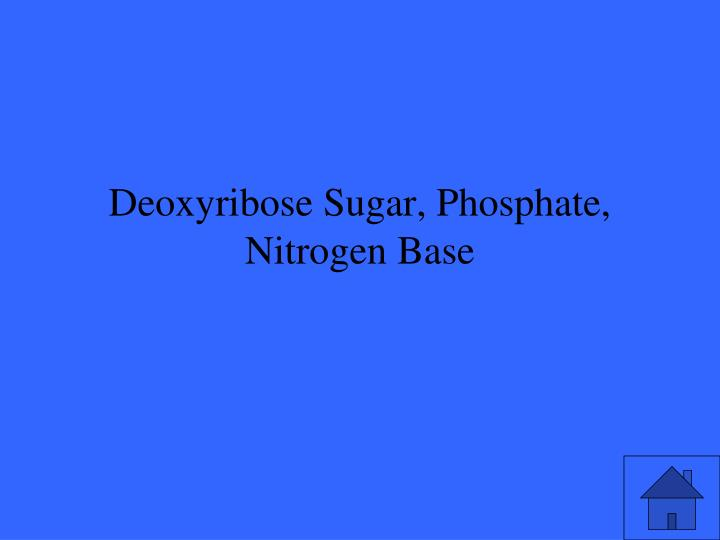 Deoxyribose Sugar, Phosphate, Nitrogen Base