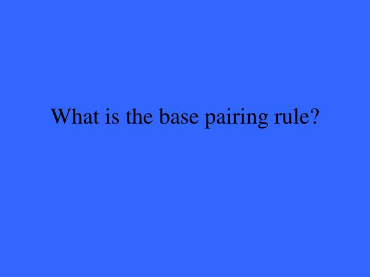 What is the base pairing rule?