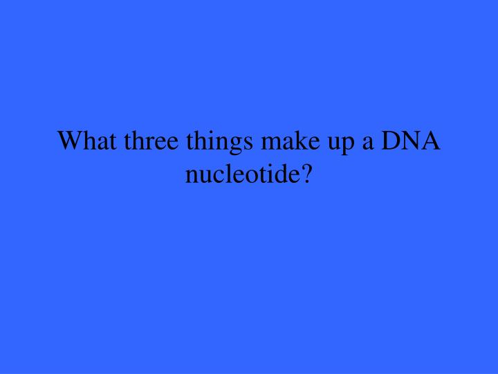 What three things make up a DNA nucleotide?