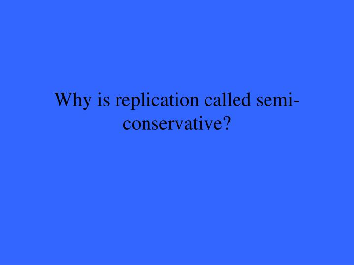 Why is replication called semi-conservative?
