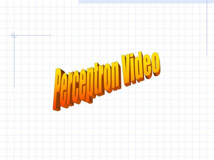 Perceptron Video