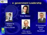 e government leadership