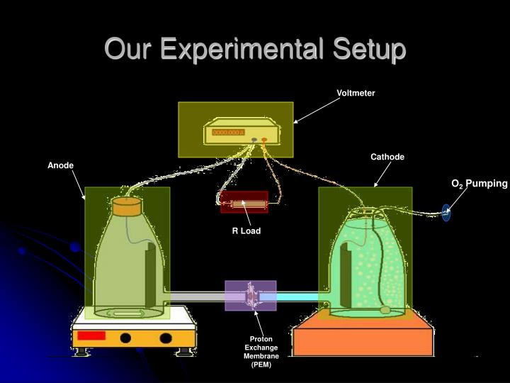 Our Experimental Setup