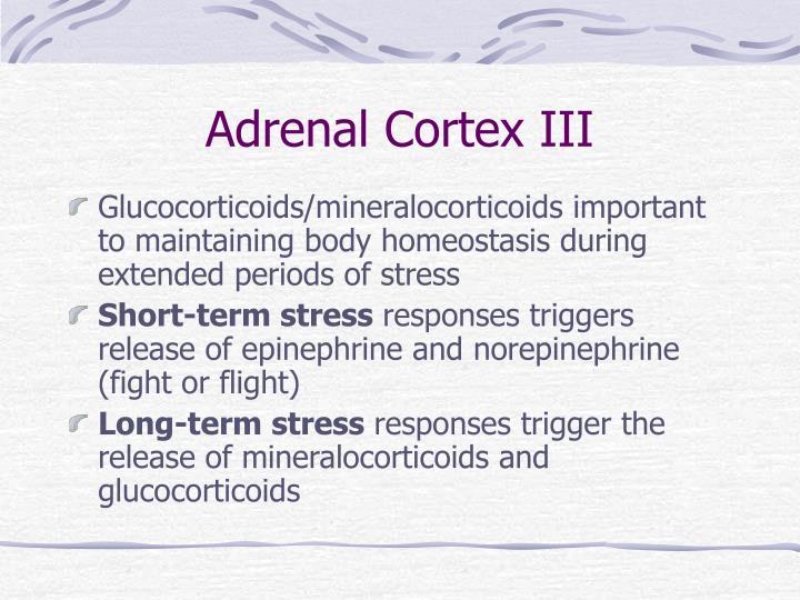 Adrenal Cortex III