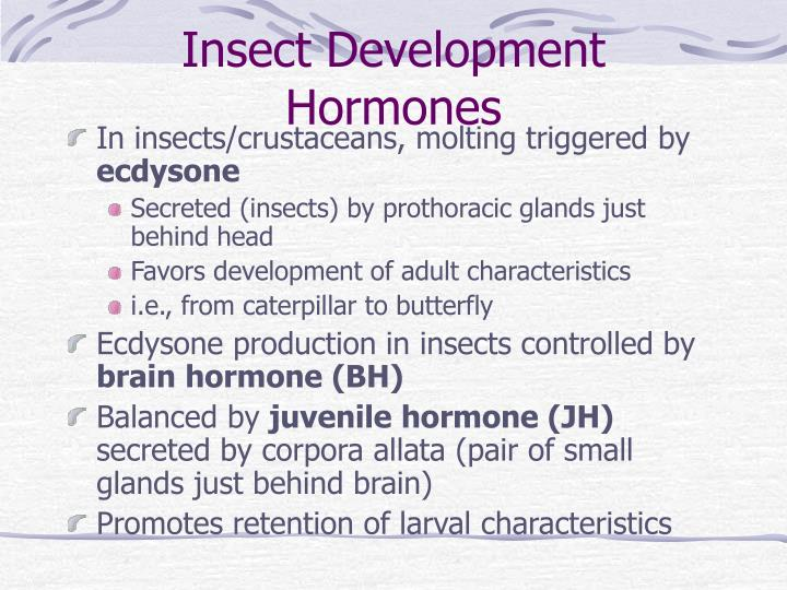 Insect Development Hormones
