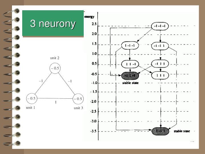 3 neurony