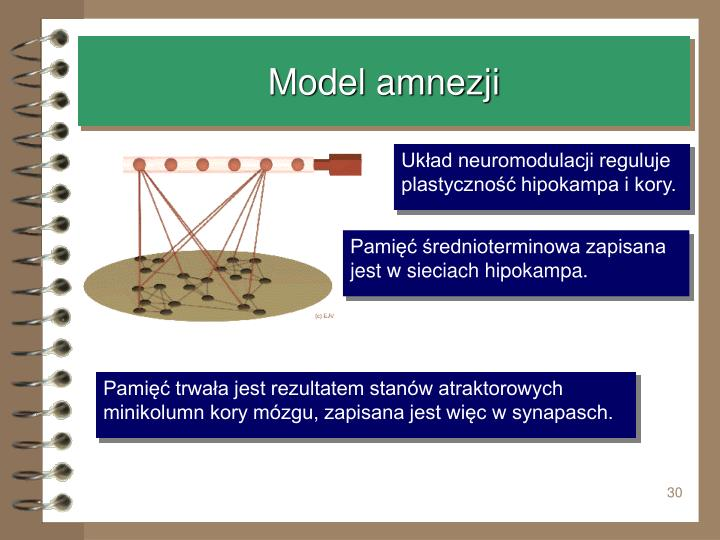 Model amnezji
