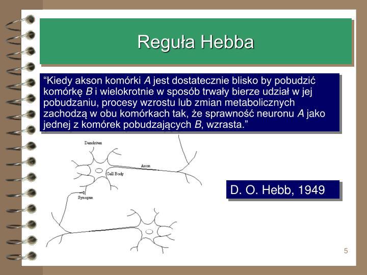 Reguła Hebba