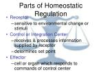parts of homeostatic regulation