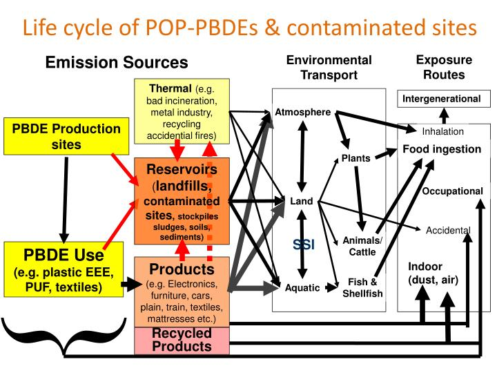 Life cycle of POP-PBDEs & contaminated sites