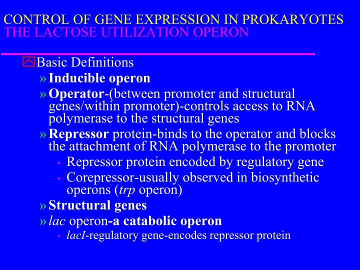 CONTROL OF GENE EXPRESSION IN PROKARYOTES