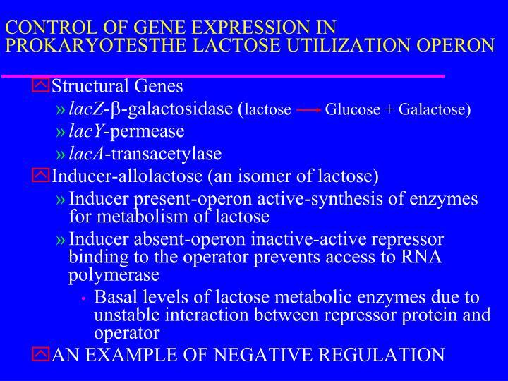 CONTROL OF GENE EXPRESSION IN PROKARYOTESTHE LACTOSE UTILIZATION OPERON