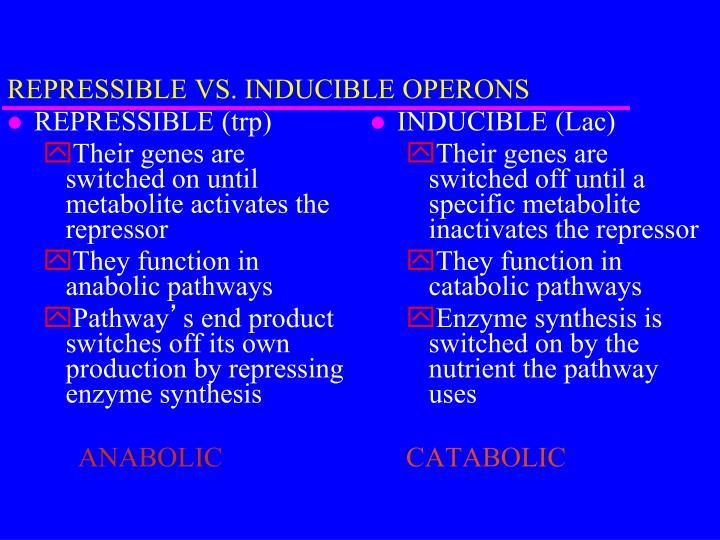 REPRESSIBLE VS. INDUCIBLE OPERONS