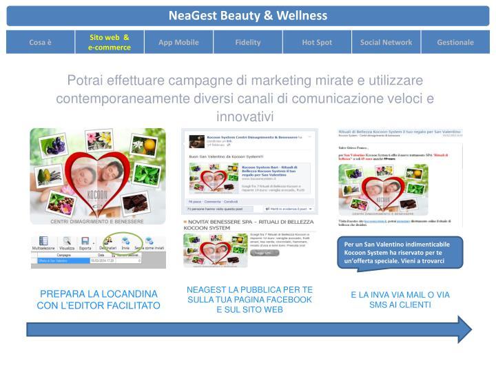 Potrai effettuare campagne di marketing mirate e utilizzare contemporaneamente diversi canali di comunicazione veloci e innovativi
