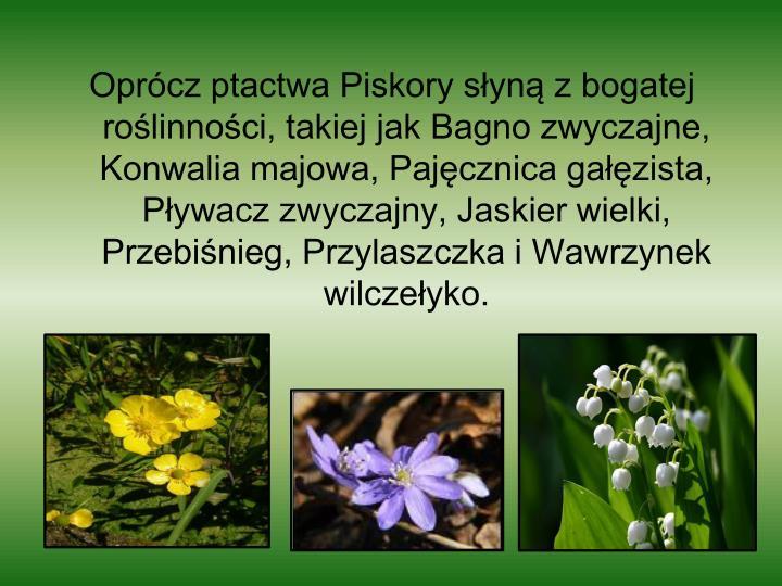 Oprócz ptactwa Piskory słyną z bogatej roślinności, takiej jak Bagno zwyczajne, Konwalia majowa, Pajęcznica gałęzista, Pływacz zwyczajny, Jaskier wielki, Przebiśnieg, Przylaszczka i Wawrzynek