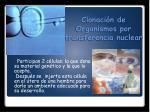 clonaci n de organismos por transferencia nuclear