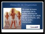 clonaci n de organismos