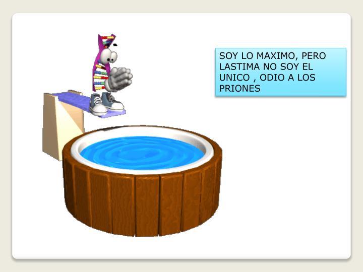 SOY LO MAXIMO, PERO LASTIMA NO SOY EL UNICO , ODIO A LOS PRIONES