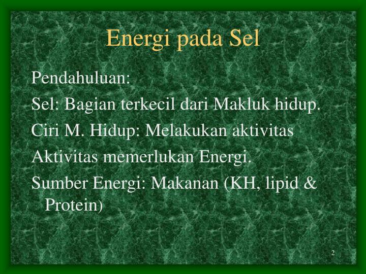 Energi pada Sel