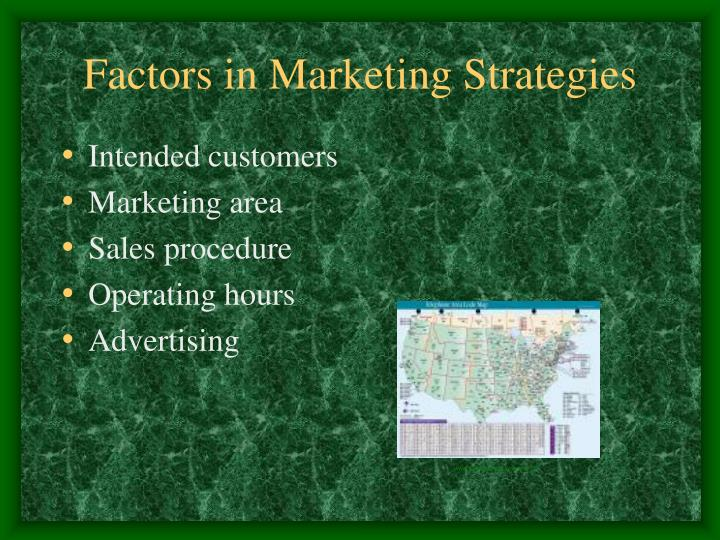 Factors in Marketing Strategies
