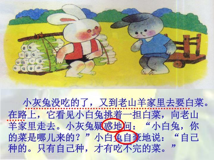 小灰兔没吃的了,又到老山羊家里去要白菜。在路上,它看见小白兔挑着一担白菜,向老山羊家里走去。小灰兔疑惑地问: