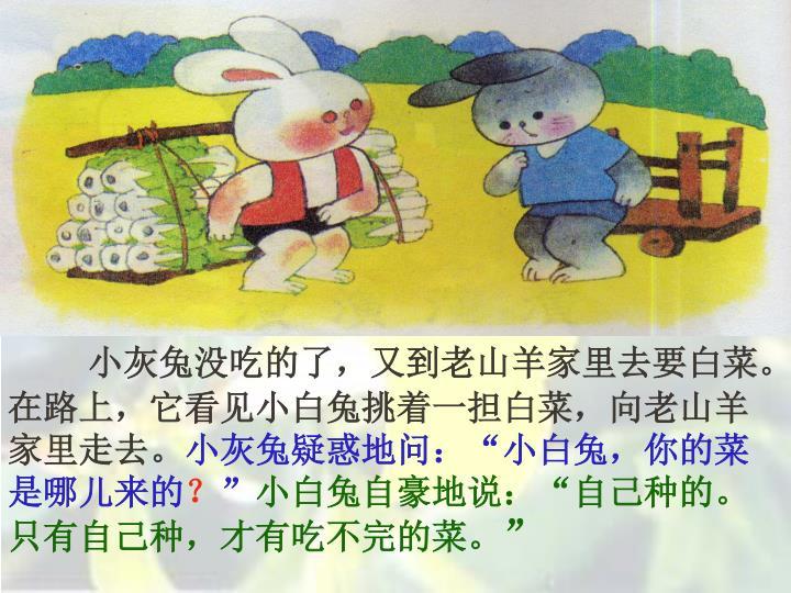 小灰兔没吃的了,又到老山羊家里去要白菜。在路上,它看见小白兔挑着一担白菜,向老山羊家里走去。