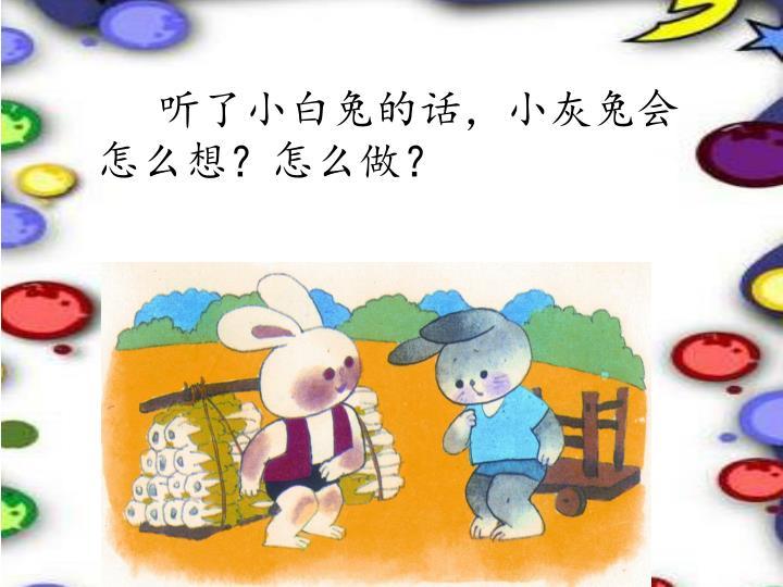 听了小白兔的话,小灰兔会怎么想?怎么做?