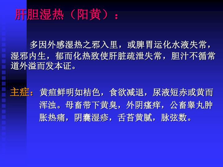 肝胆湿热(阳黄):