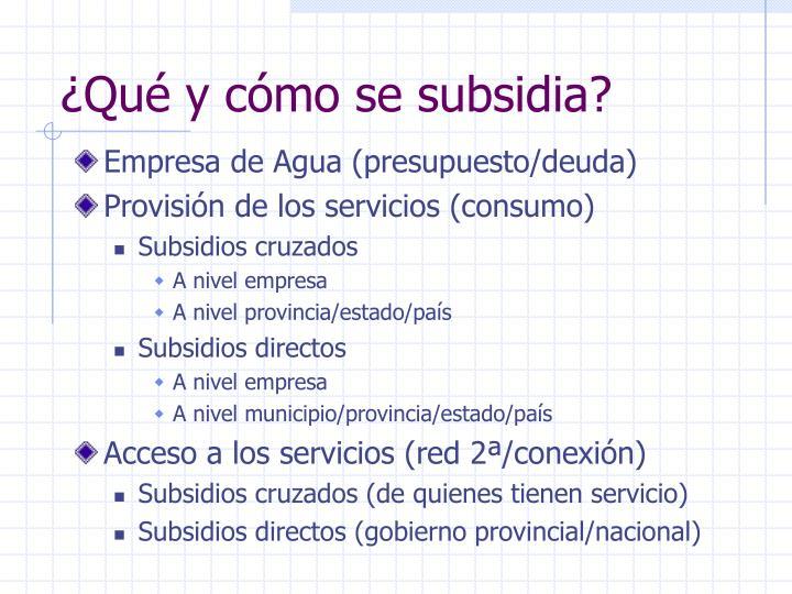 ¿Qué y cómo se subsidia?