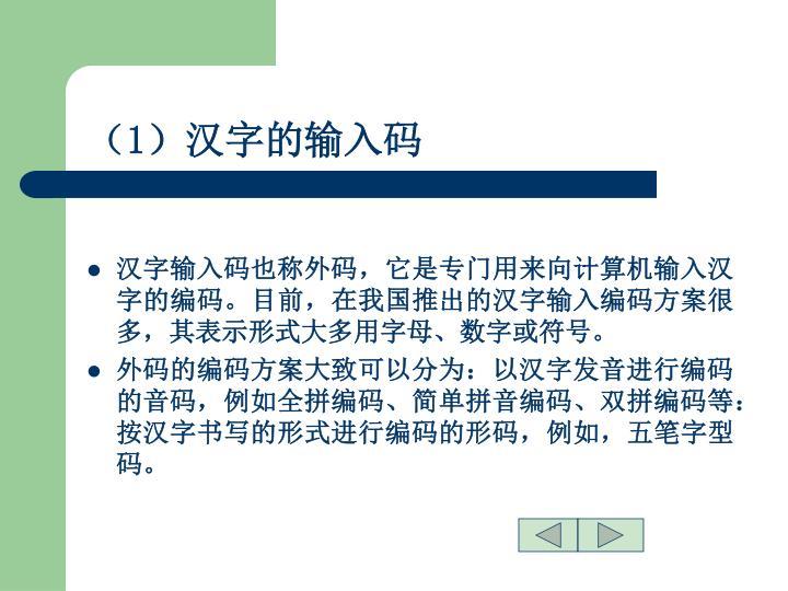 (1)汉字的输入码